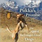 pukkas-promise